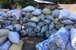 sacos de carbon